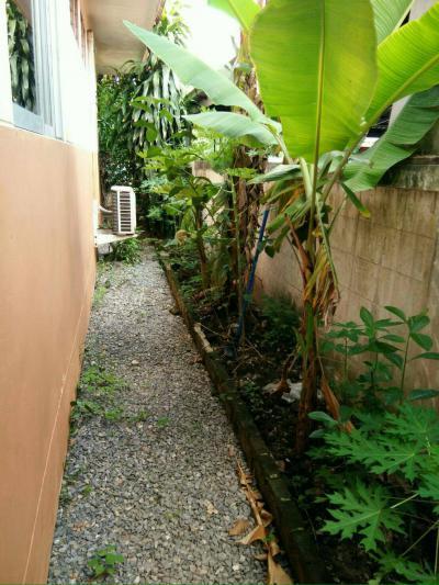บ้านเดี่ยว 2600000 กรุงเทพมหานคร เขตหนองจอก หนองจอก